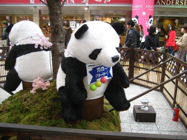 上野駅のパンダ2